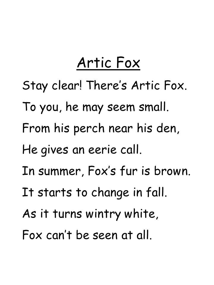 Artic Fox Stay clear! There's Artic Fox. To you, he may seem small.
