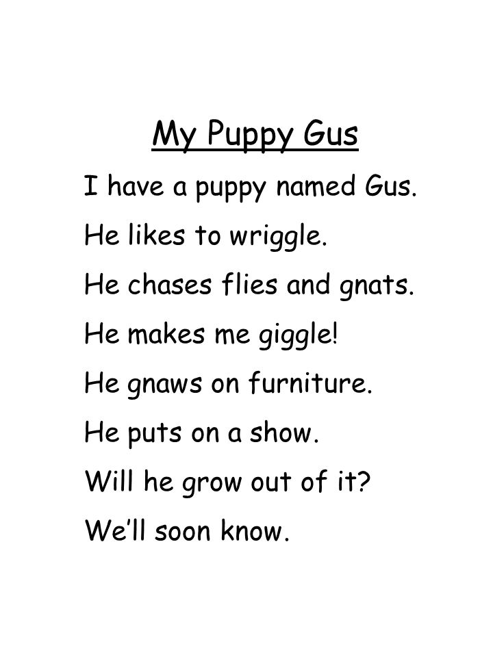 My Puppy Gus I have a puppy named Gus. He likes to wriggle.
