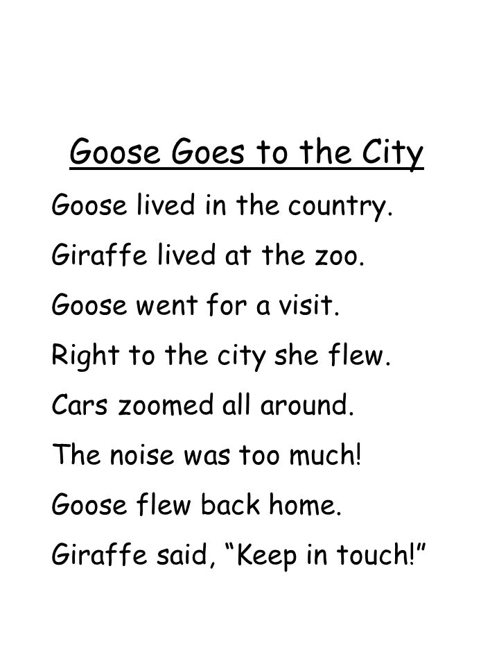 Goose Goes to the City Goose lived in the country.