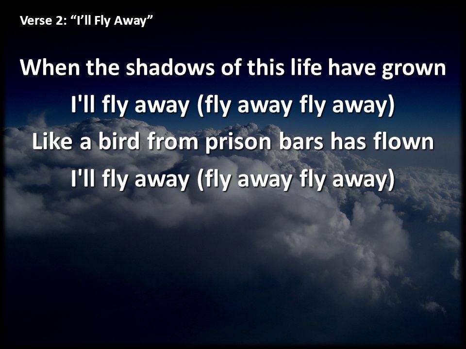 I ll fly away (fly away fly away)