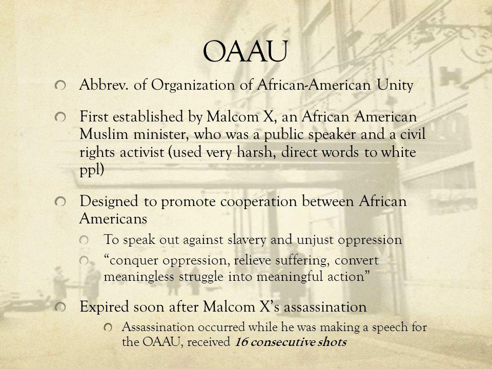 OAAU Abbrev. of Organization of African-American Unity