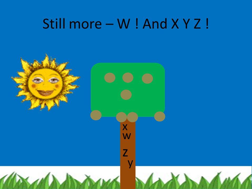 Still more – W ! And X Y Z ! x w z y