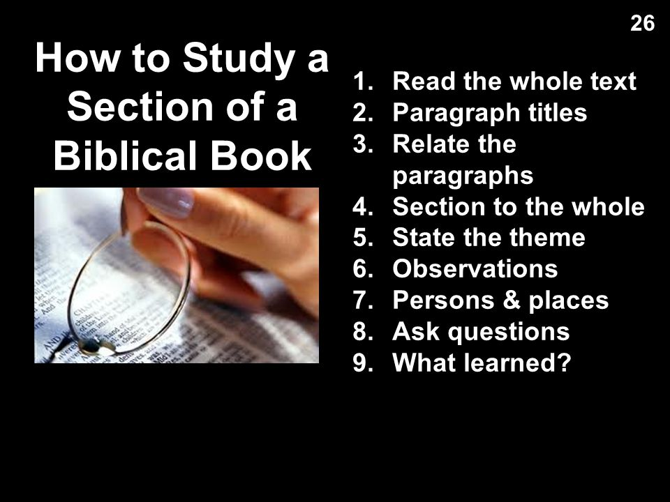 How to Study a Section of a Biblical Book