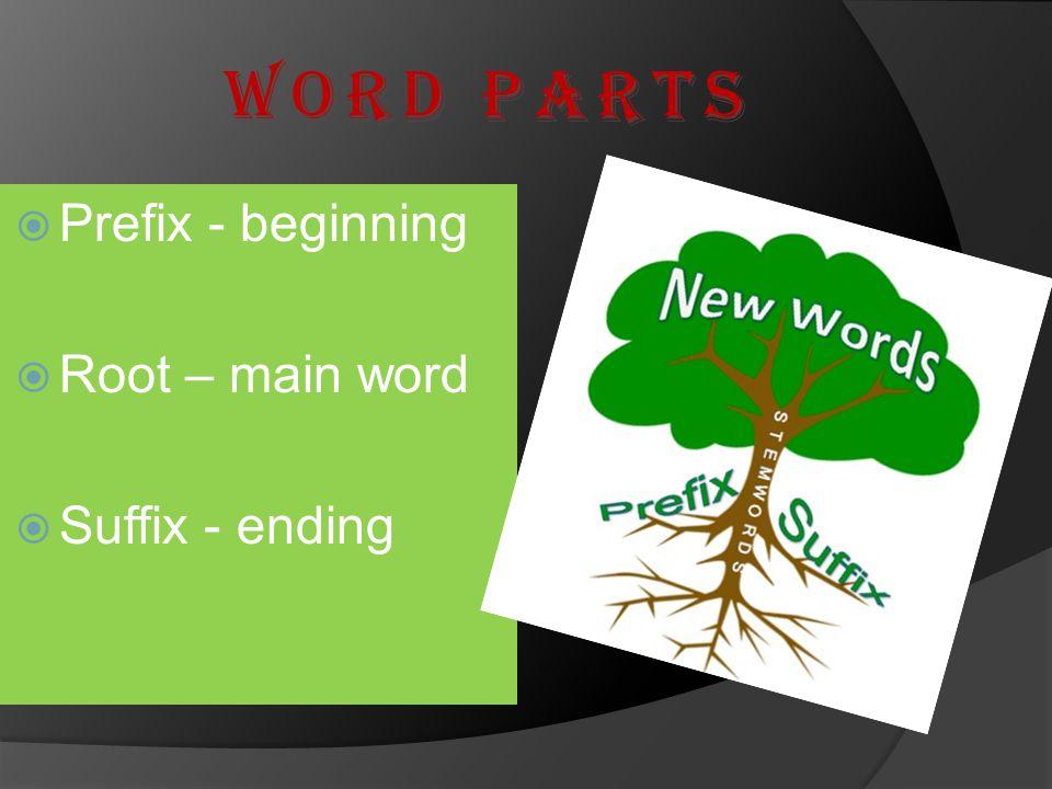 Word Parts Prefix - beginning Root – main word Suffix - ending