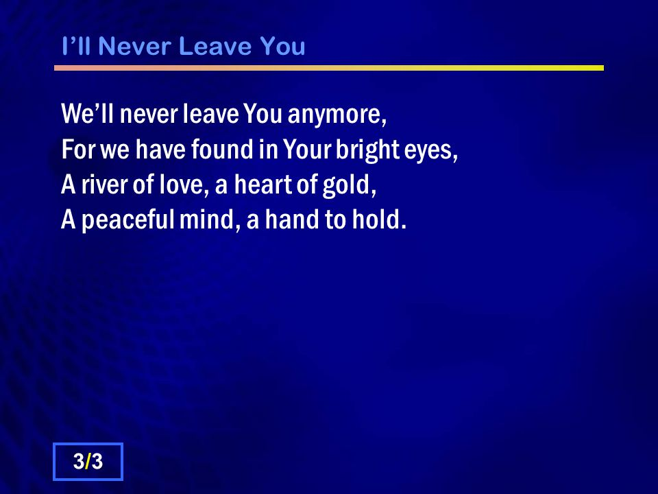I'll Never Leave You