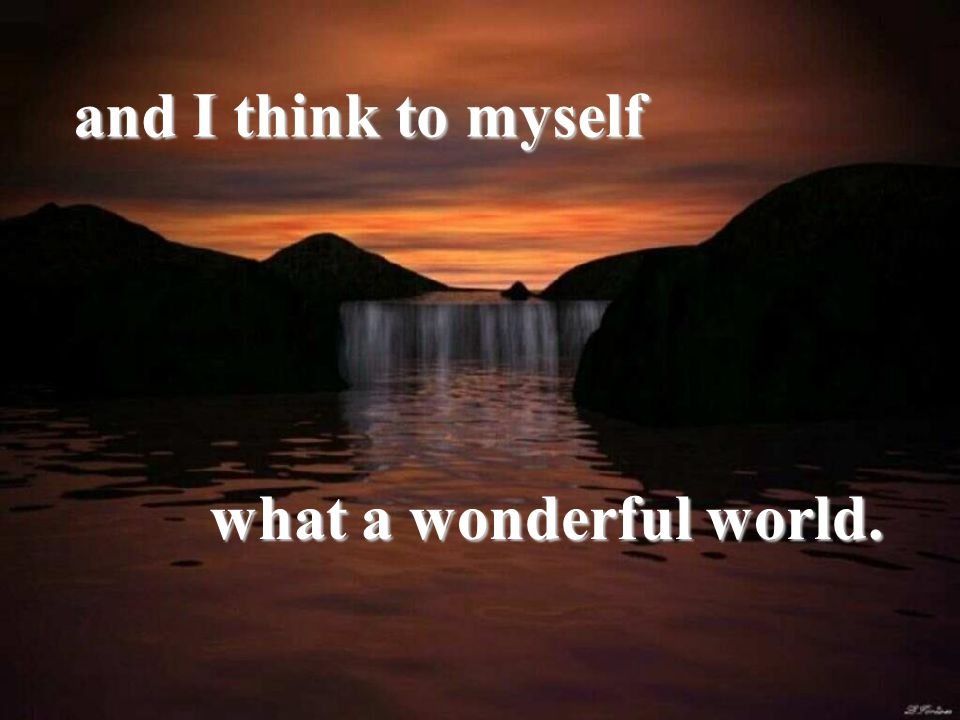 and I think to myself what a wonderful world.