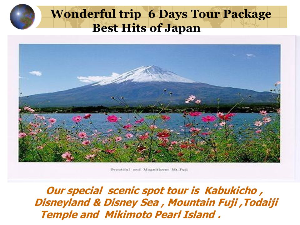 Wonderful trip 6 Days Tour Package Best Hits of Japan