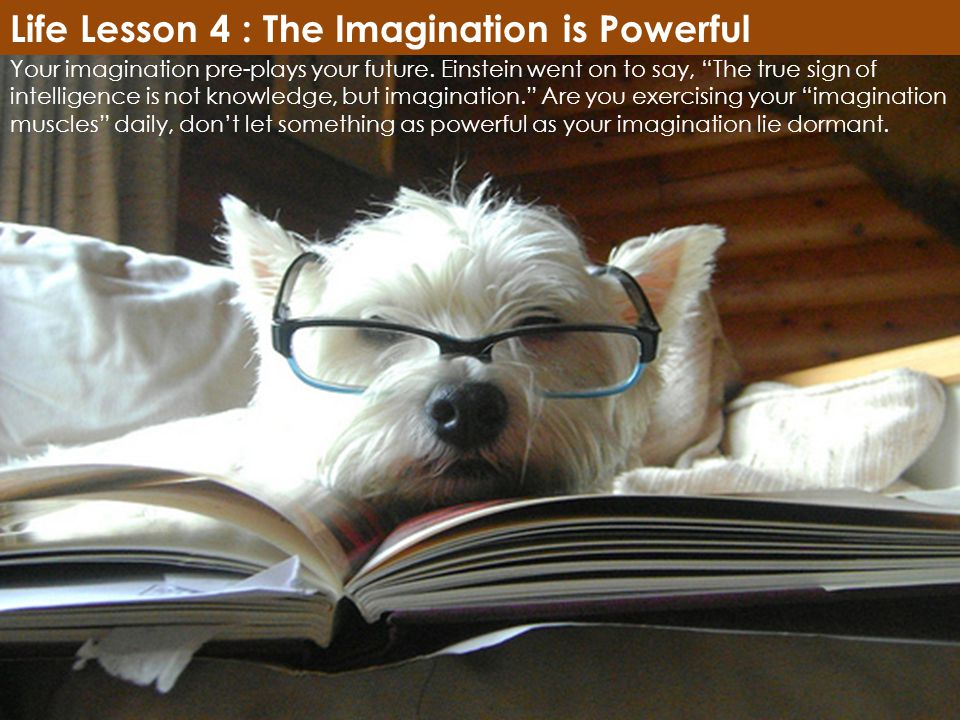 Life Lesson 4 : The Imagination is Powerful