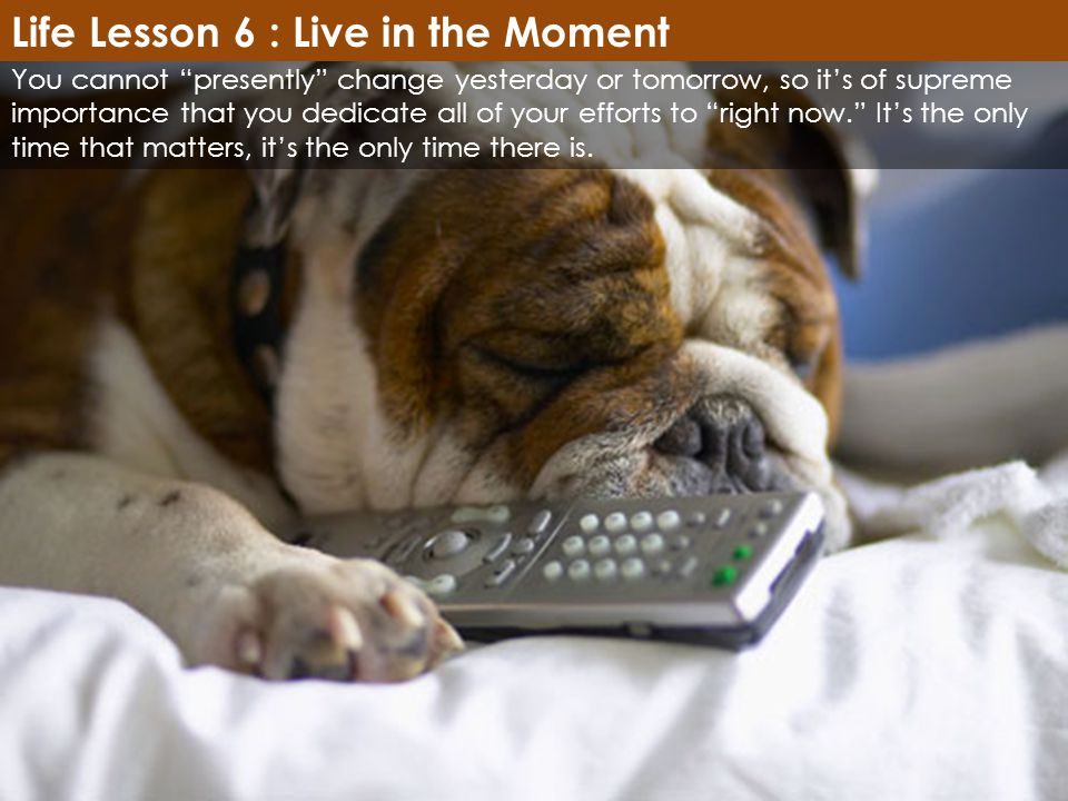 Life Lesson 6 : Live in the Moment
