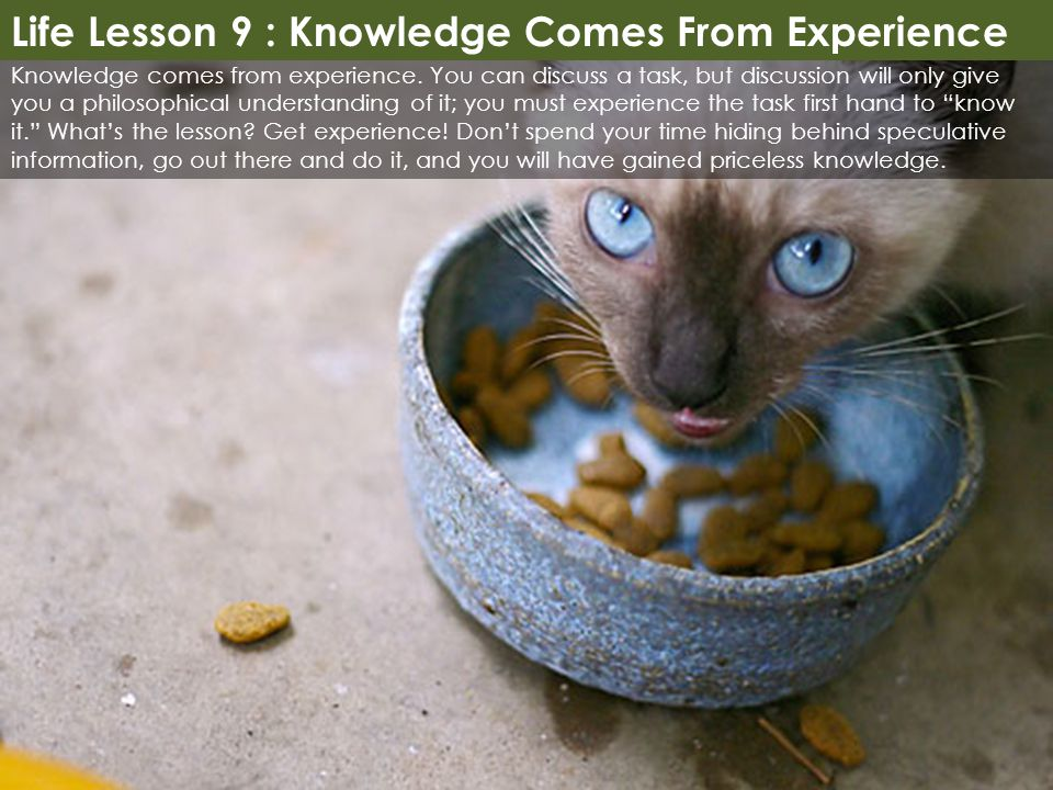 Life Lesson 9 : Knowledge Comes From Experience