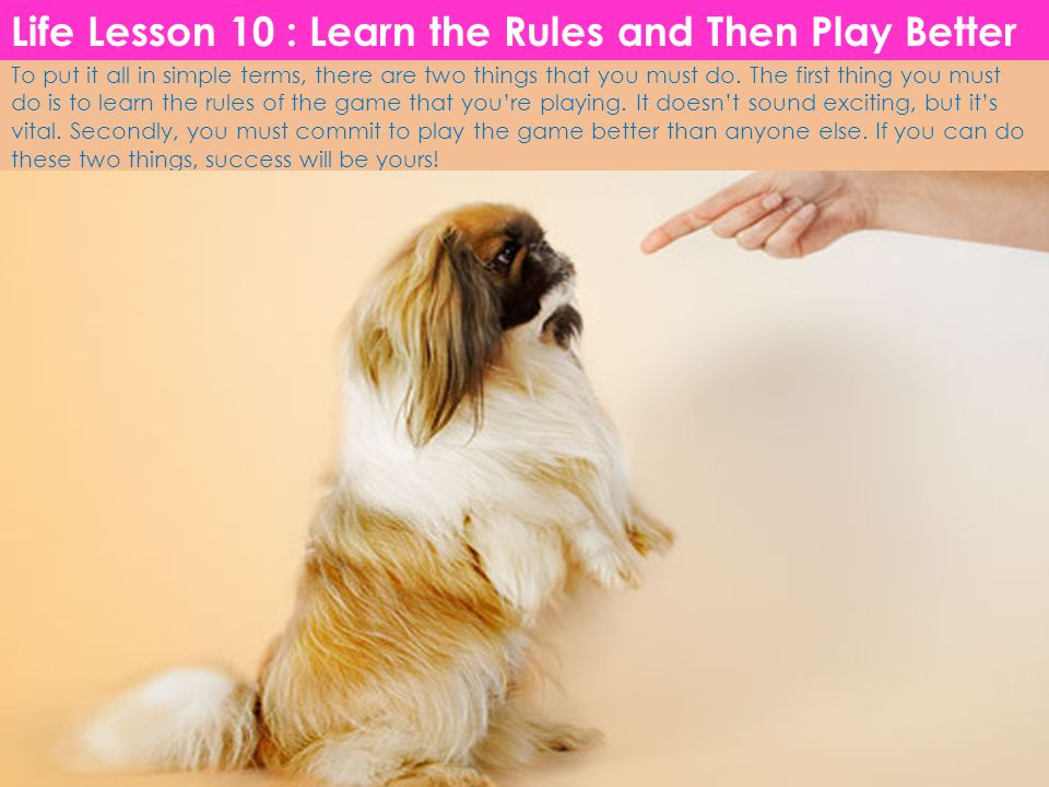 Life Lesson 10 : Learn the Rules and Then Play Better