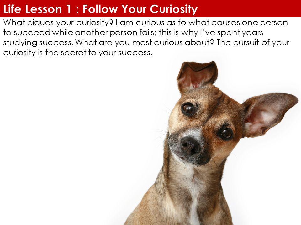 Life Lesson 1 : Follow Your Curiosity