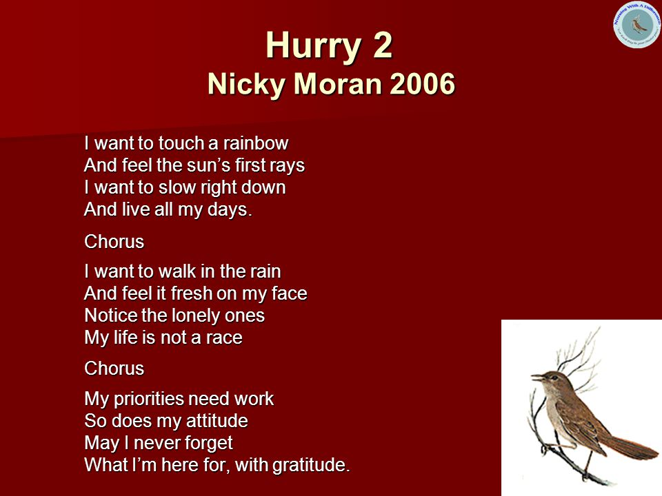 Hurry 2 Nicky Moran 2006 I want to touch a rainbow