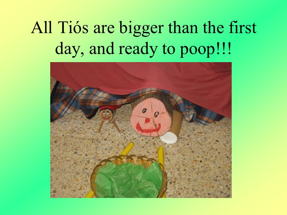 All Tiós are bigger than the first day, and ready to poop!!!