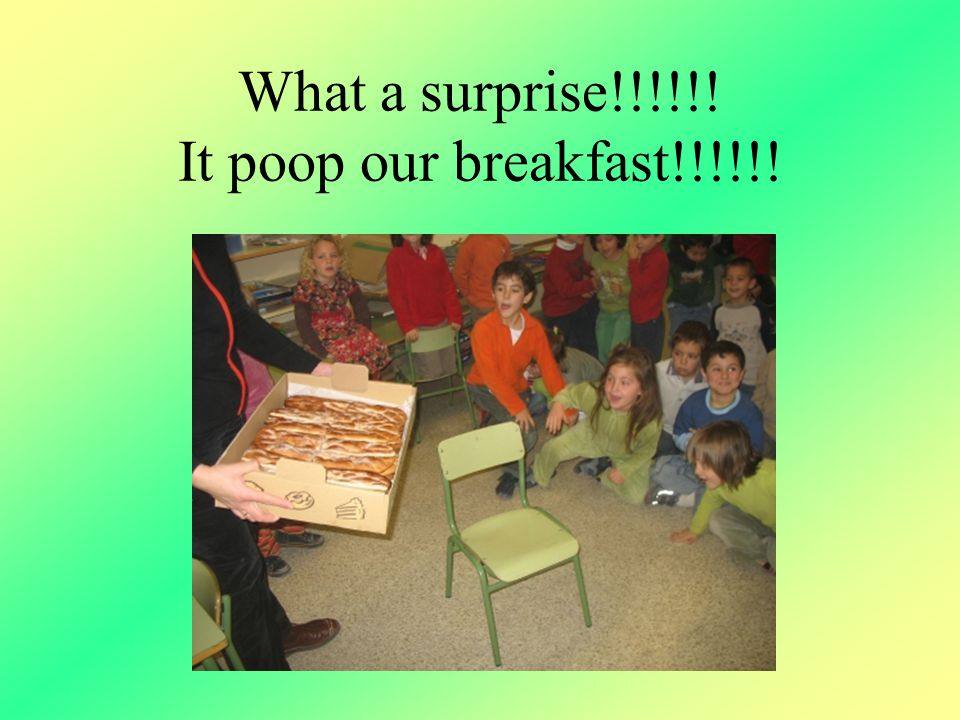 What a surprise!!!!!! It poop our breakfast!!!!!!