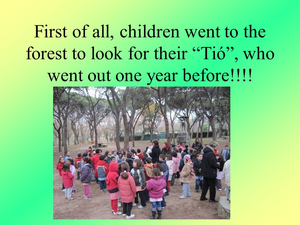 First of all, children went to the forest to look for their Tió , who went out one year before!!!!