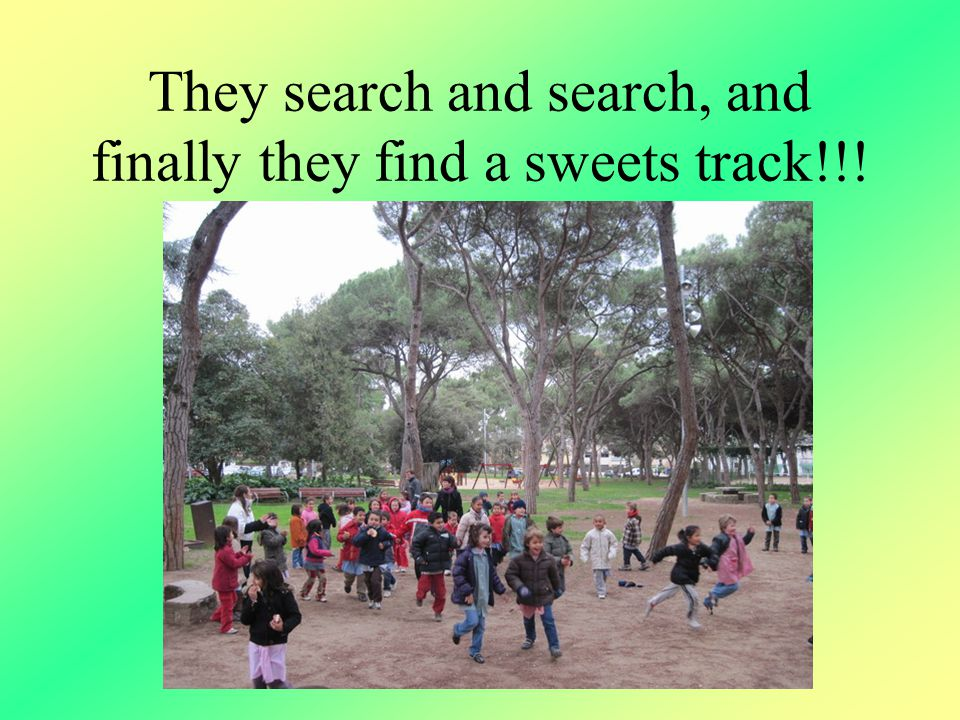 They search and search, and finally they find a sweets track!!!