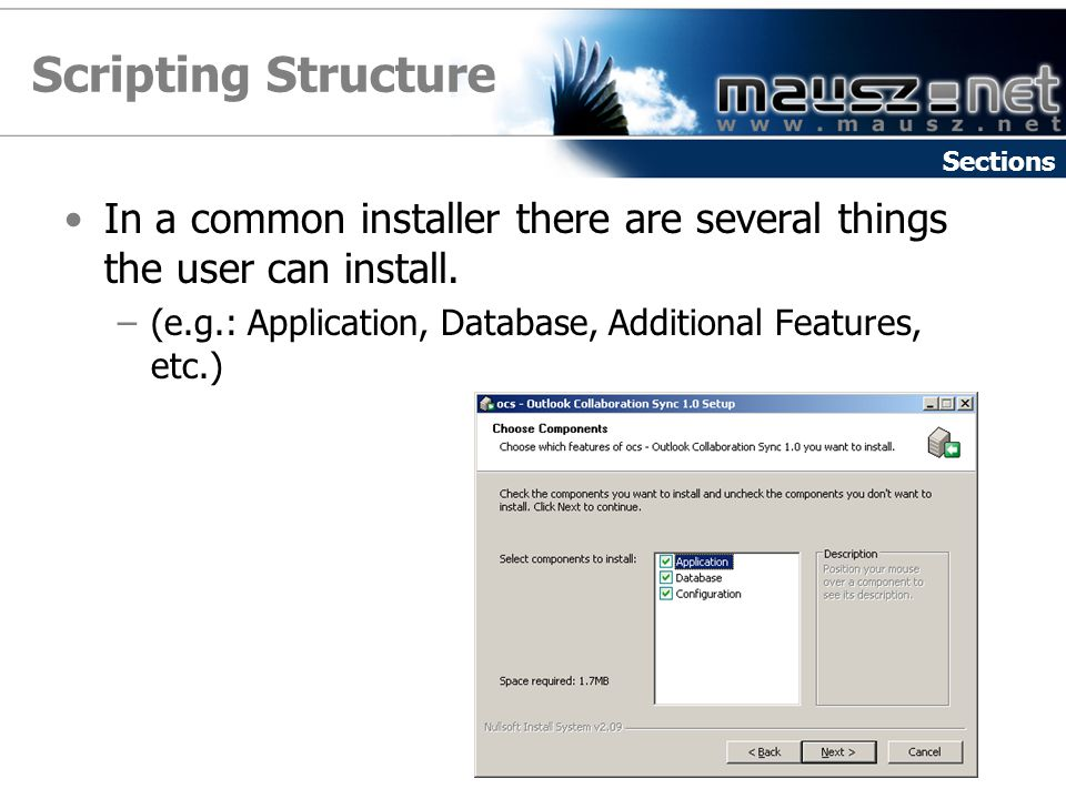 Scripting Structure Sections. In a common installer there are several things the user can install.