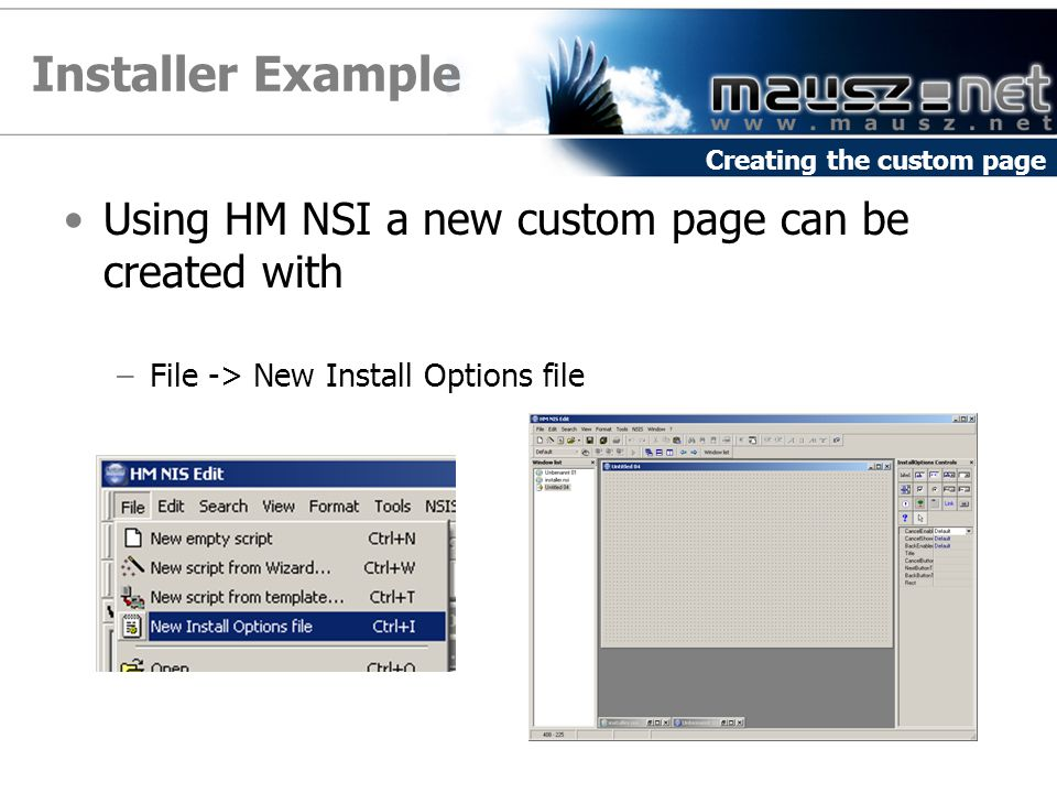 Installer Example Using HM NSI a new custom page can be created with