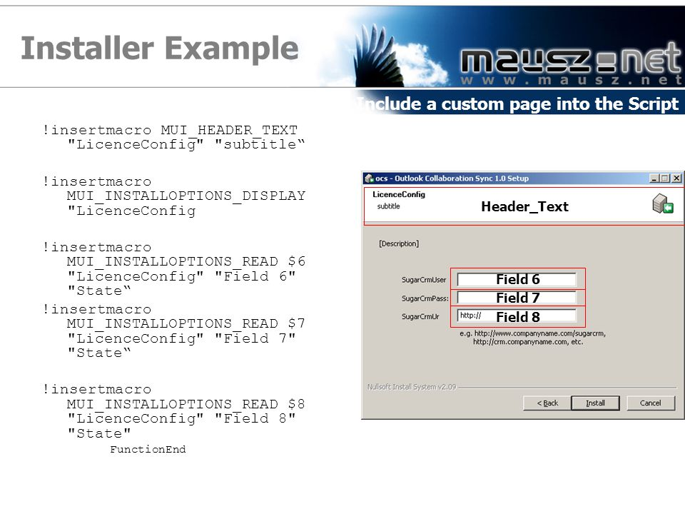 Installer Example Include a custom page into the Script