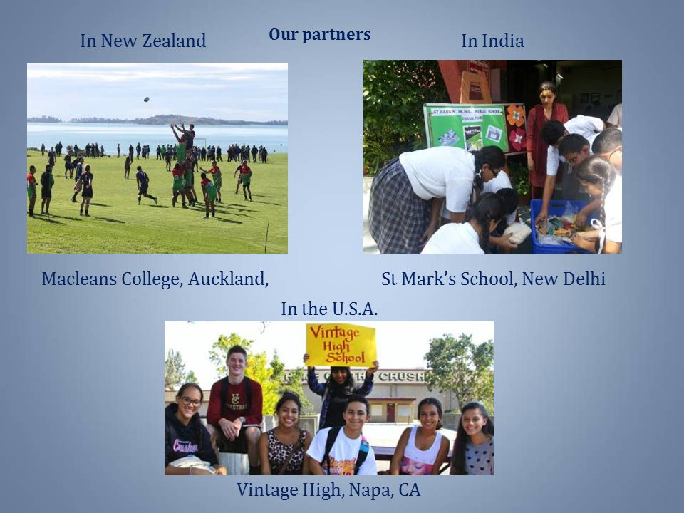 Macleans College, Auckland, St Mark's School, New Delhi