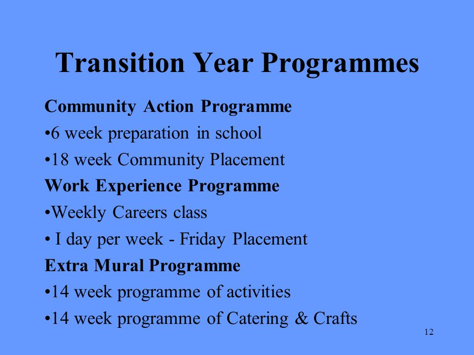 Transition Year Programmes