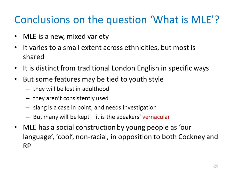 Conclusions on the question 'What is MLE'
