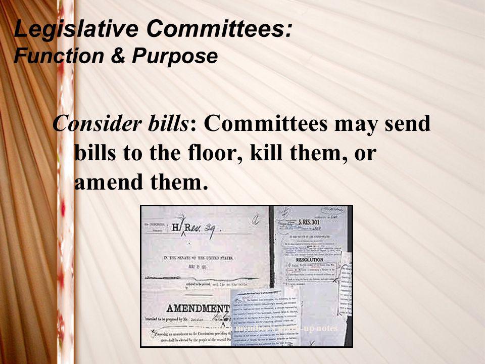 Legislative Committees: Function & Purpose