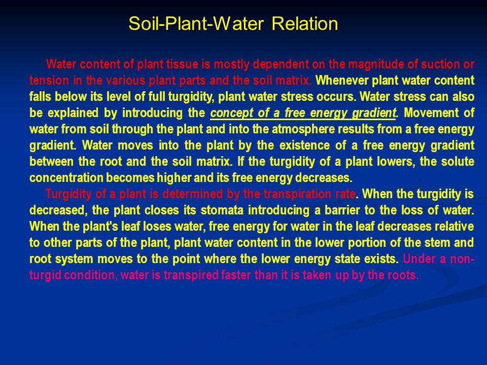 Soil-Plant-Water Relation
