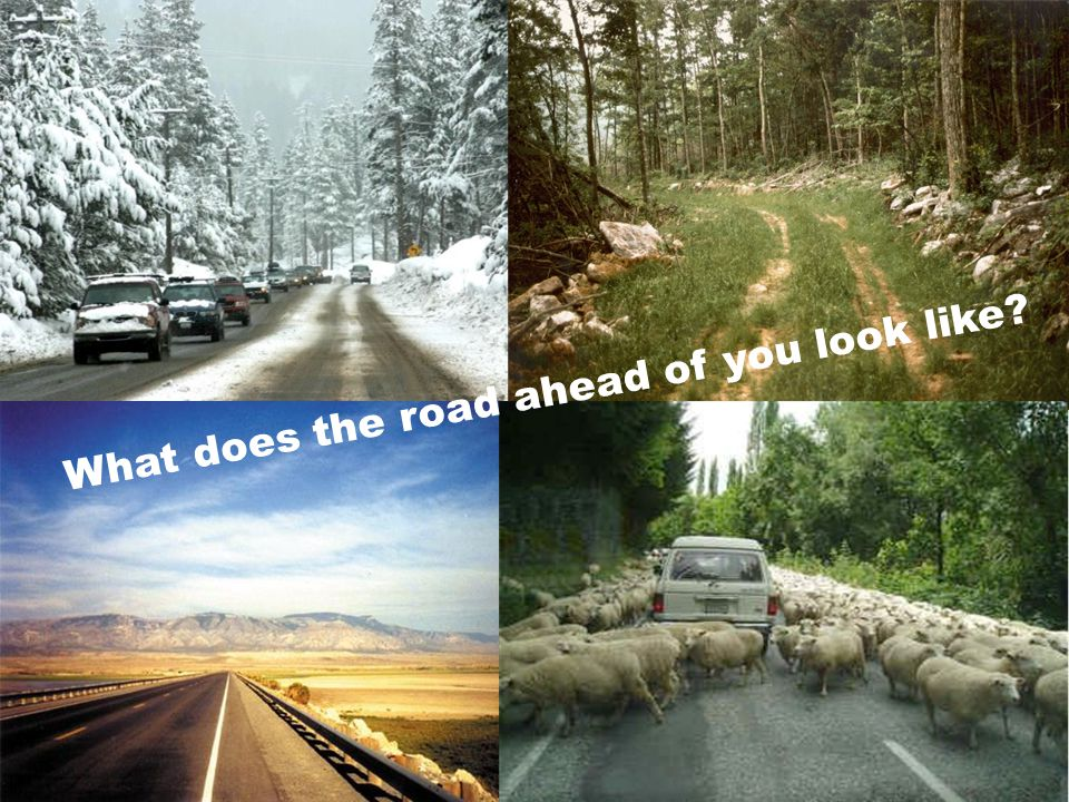 What does the road ahead of you look like