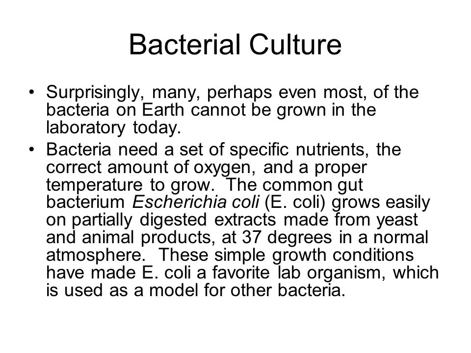 Bacterial Culture Surprisingly, many, perhaps even most, of the bacteria on Earth cannot be grown in the laboratory today.