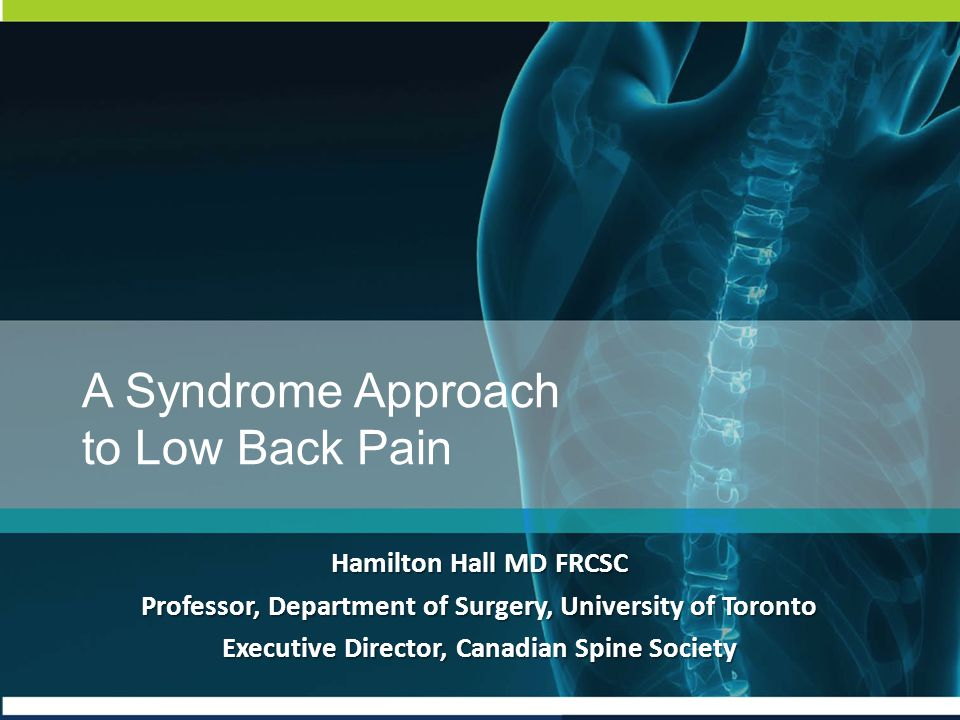 A Syndrome Approach to Low Back Pain