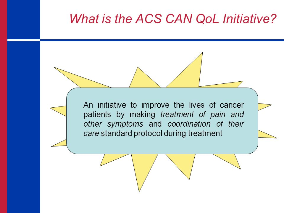 What is the ACS CAN QoL Initiative