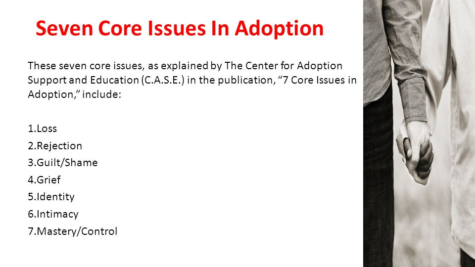 Seven Core Issues In Adoption