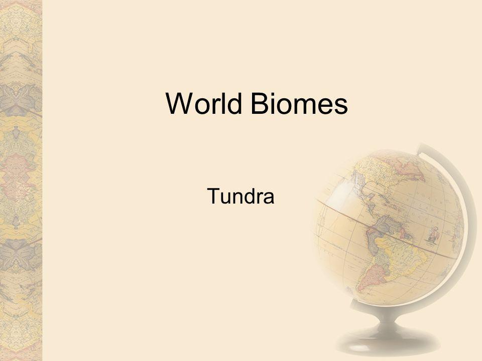World Biomes Tundra