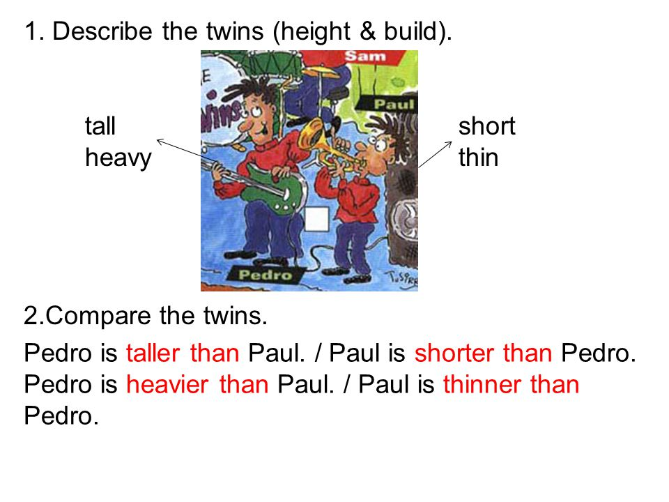 1. Describe the twins (height & build).