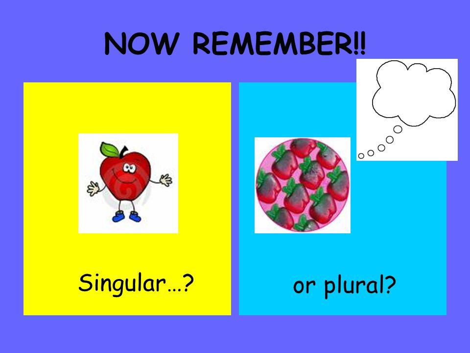 NOW REMEMBER!! Singular… or plural