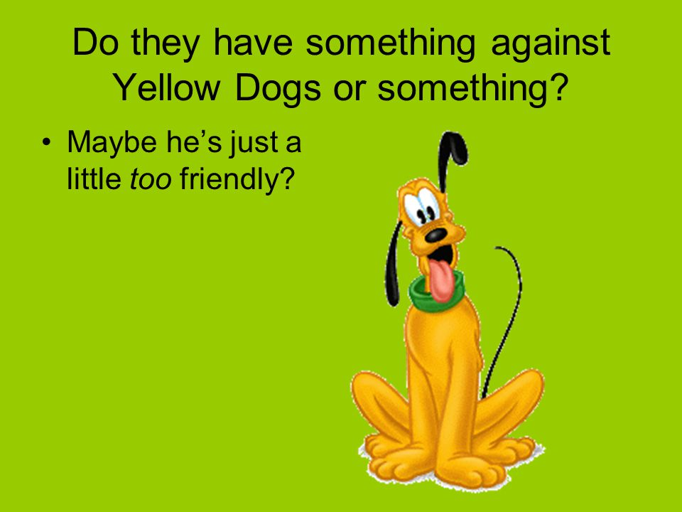 Do they have something against Yellow Dogs or something