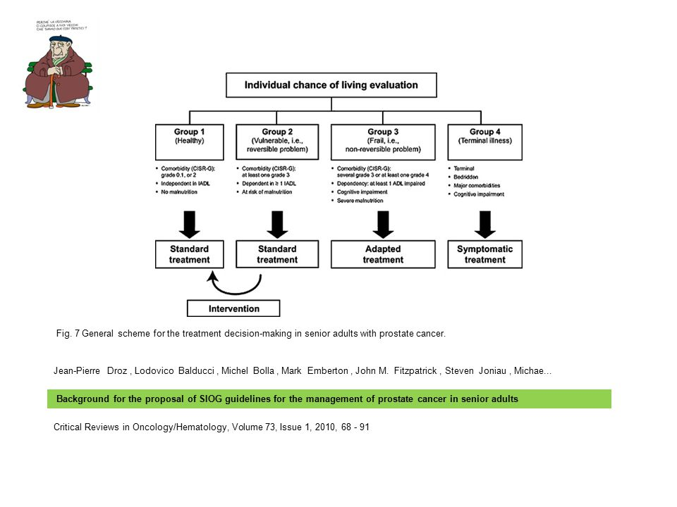 Fig. 7 General scheme for the treatment decision-making in senior adults with prostate cancer.