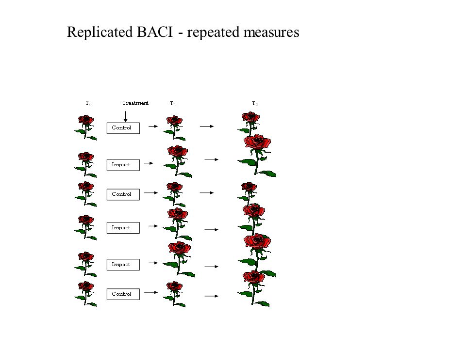 Replicated BACI - repeated measures