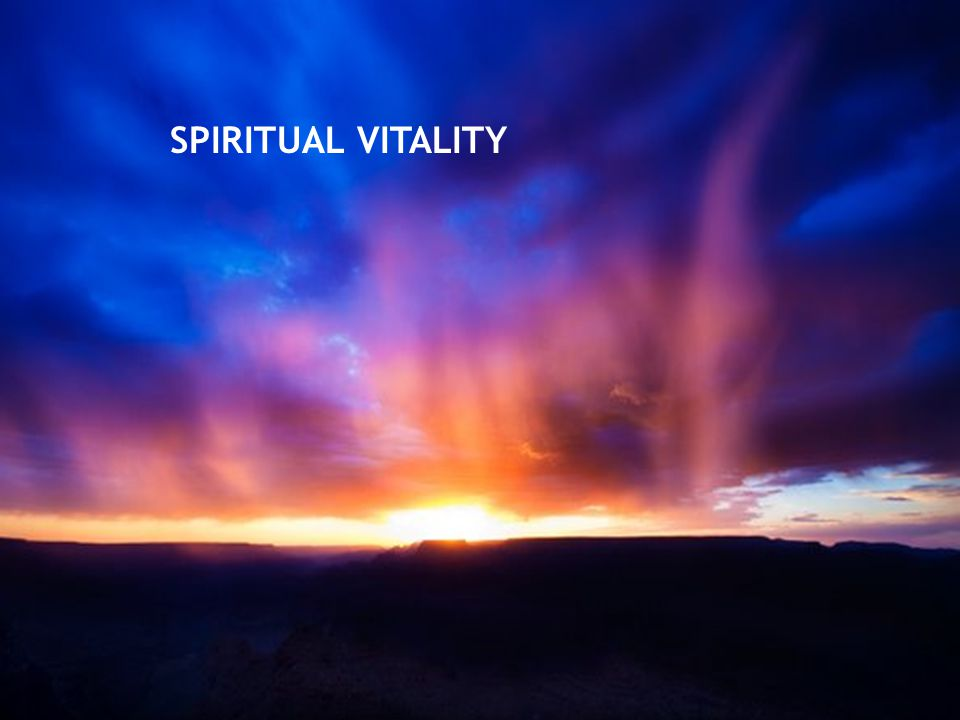 SPIRITUAL VITALITY Reason #4: Community ministry can bring new spiritual vitality, individually and in the congregation.
