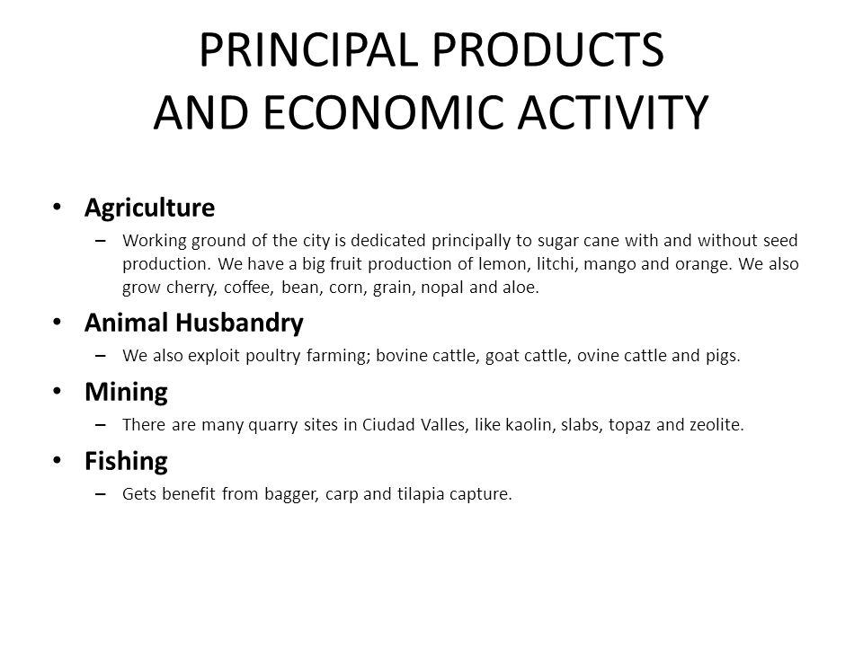 PRINCIPAL PRODUCTS AND ECONOMIC ACTIVITY
