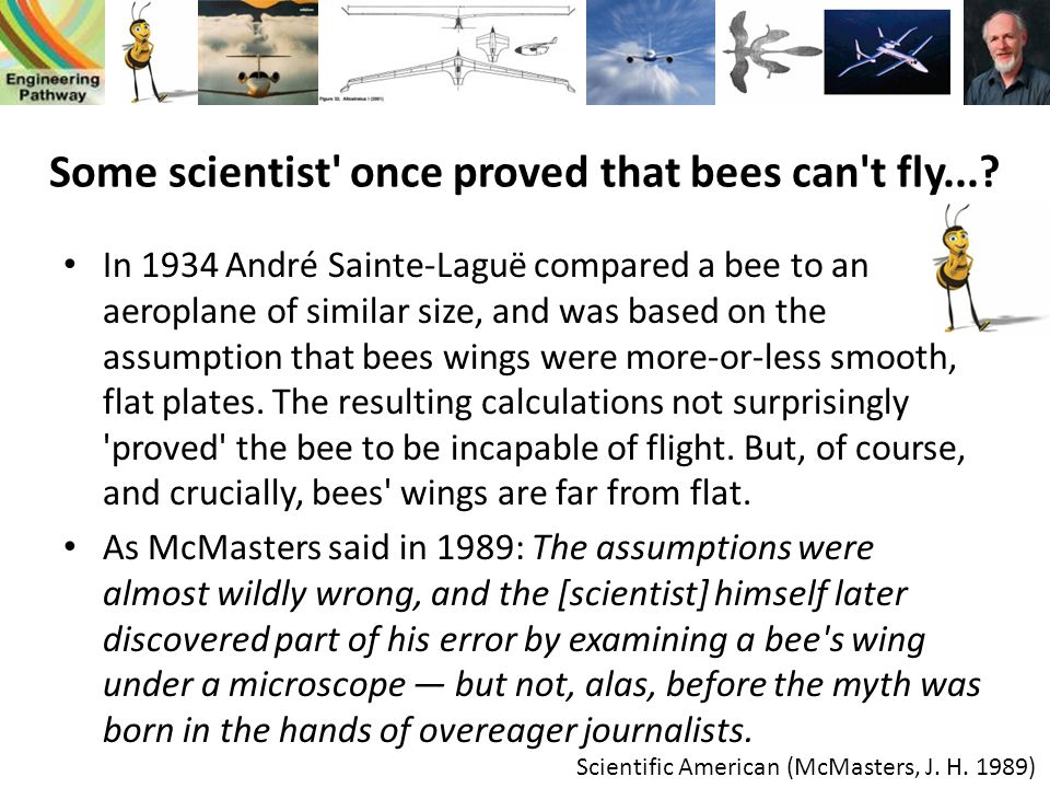 Some scientist once proved that bees can t fly...