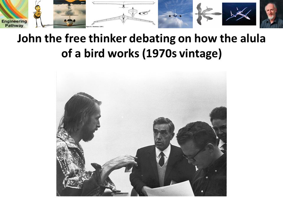 John the free thinker debating on how the alula of a bird works (1970s vintage)