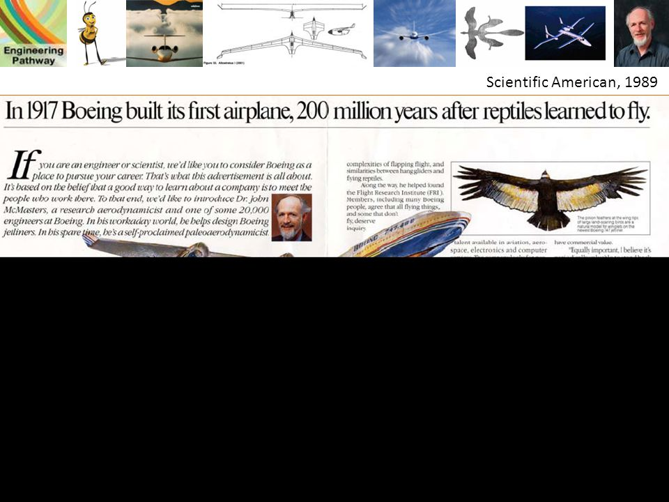 Scientific American, 1989