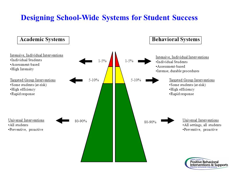 Designing School-Wide Systems for Student Success