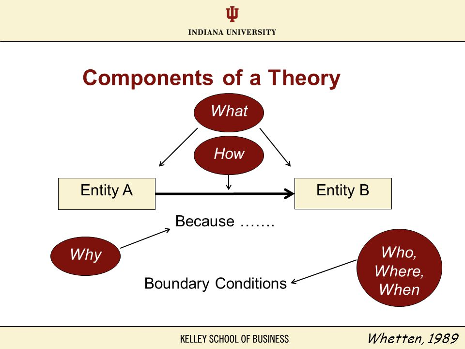 Components of a Theory What How Entity A Entity B Because …….