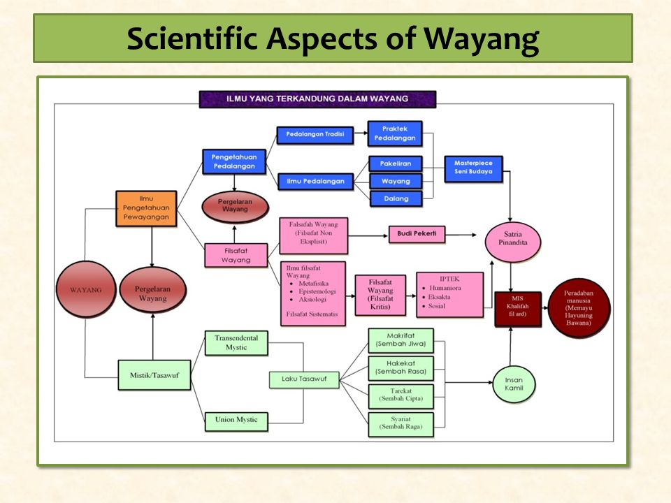 Scientific Aspects of Wayang