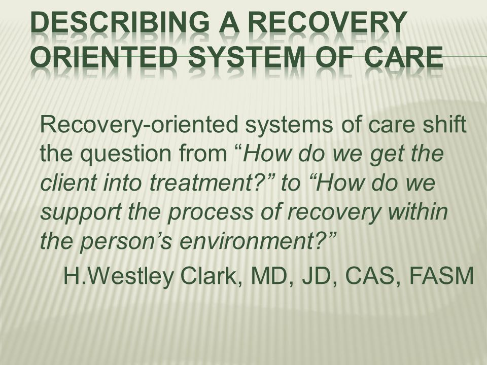 Describing a recovery oriented system of care