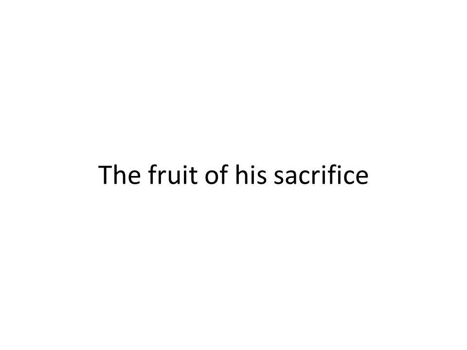 The fruit of his sacrifice